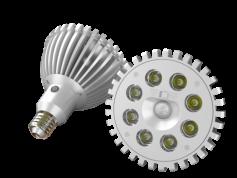 Par 38 LED Outdoor Security Lamp